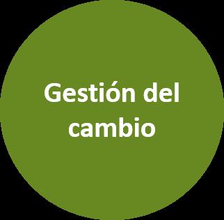 Selección de mandos intermedios y directivos